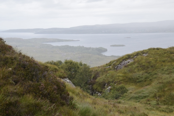 Scot_walk1
