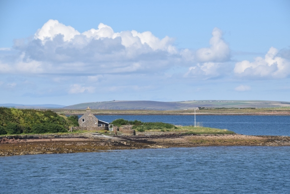 orkney_9
