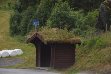 a road 13
