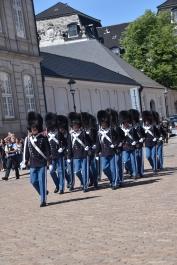 c guards 1