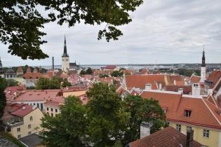 Tallinn_10
